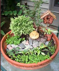 Growing a miniature garden in a dish So fun for kids It even