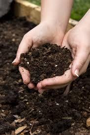 Garden Soil Types - raised garden bed soil u2013 which soil type for raised beds is best