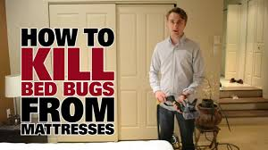Bed Bug Meme - how to get rid of bed bugs dupray steam cleaners youtube
