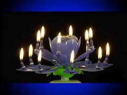 amazing birthday candle the amazing birthday candle the authentic and original lotus