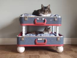 Cat Bunk Bed 6 Ways To Repurpose Suitcases Bunk Bed Suitcase And