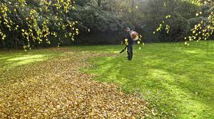 spring and fall clean ups connected lawn care oakville