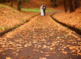 fall wedding best wedding destinations for fall season vitalchek