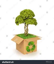 concept nature conservation cardboard box recycle stock