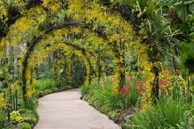 Botanic Gardens Hobart Road Trippin Hobart And Launceston Live Last Minute