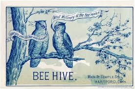 vintage owls image the graphics