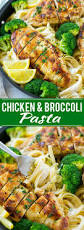 chicken and broccoli pasta dinner at the zoo