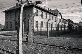 poland launches probe into calls to send refugees to auschwitz