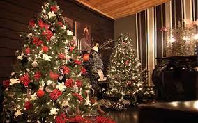 ideas to decorate trees home interior ekterior ideas