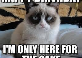 Funny Animal Birthday Memes - happy birthday cake meme birthday cake memes 100 ultimate funny