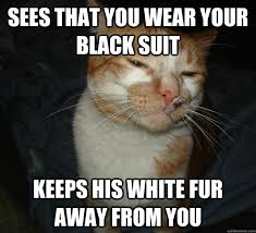 Cat Suit Meme - best of the cool cat craig meme 20 pics pleated jeans