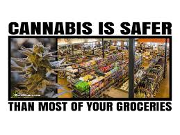 Legalize Weed Meme - legalize cannabis memes memes for legal weed
