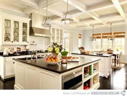 the best kitchen design software dream kitchen design software astounding designs home lover best