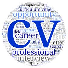 Professional Resume Writers Online by 28 Curriculum Vitae Writing Services 13 How To Write Cv