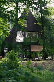 modern cabin in hemlock forest