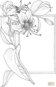 663 best images floral images on pinterest drawings coloring