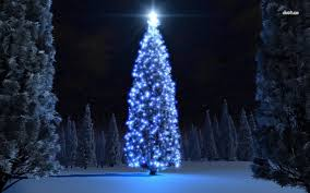 decoration ideas white tree with led white lights and