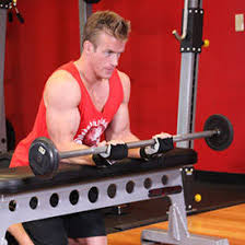 Workouts With A Bench 5 Arm Blasting Workouts A Beginner U0027s Guide