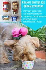 best 25 dog ice cream ideas on pinterest summer dog treats