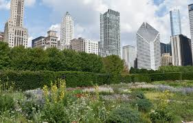 What Is An Urban Garden Urban Refuge How Cities Can Help Rebuild Declining Bee
