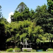 Botanic Gardens Brisbane City Brisbane City Botanic Gardens Brisbane