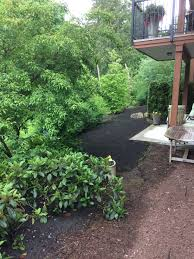 Alternatives To Grass In Backyard by Lawn Care Archives West Coast Landscape Professional