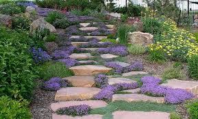 Slope Landscaping Ideas For Backyards Hillside Landscaping Pictures