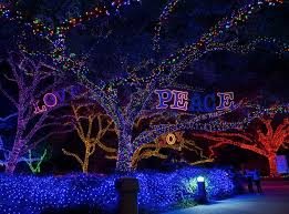 downtown san antonio christmas lights san antonio lighting san antonio zoo zoo lights free holiday