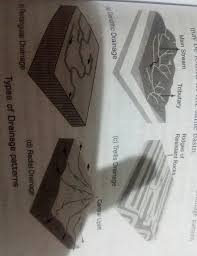 with the help of diagram explain the drainage pattern and