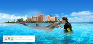 Atlantis Bahamas swimming with dolphins atlantis paradise island bahamas