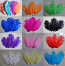 natural white ostrich feathers plume for christmas wedding party