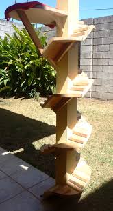 Outdoor Cat Condo Plans by Stairs Around An Outside Pole For Cats Escalera Para Gatos Cat