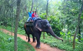 best places to visit on a 7 day family trip to kerala