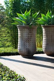 Garden Containers Large - 1562 best plants and gardening images on pinterest plants