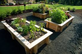 Landscaping Ideas For The Backyard by Kids Gardening Tips Ideas U0026 Projects At Home