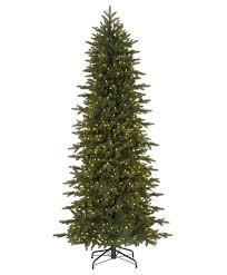 excellent ideas thin tree pine crest slim spruce