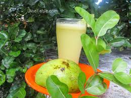Mango Juice mango juice refreshing drink പച ചമ ങ ങ ജ യ സ