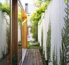 planting for side yards with narrow timber deck and concrete wall
