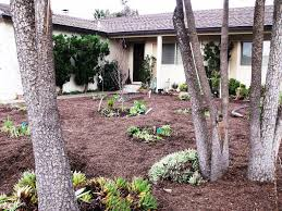 low water landscaping designs ideas