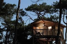 chambre d hote cabane dans les arbres chambre d hôtes lacanau océan gironde aquitaine vacances cabane