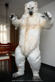 grizzly bear halloween costume 20 best bear costumes for adults images on pinterest bear