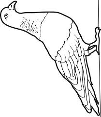 Pigeon Coloring Pages Mo Willems Coloring Pages