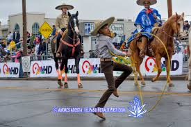 first light federal credit union el paso photo gallery first light fcu sun bowl parade 2015 el paso herald