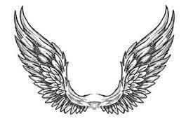 angel wings qygjxz