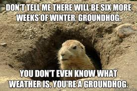 these groundhog punxsutawney phil memes will get you through the