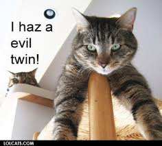Evil Cat Meme - i haz a evil twin cat meme cat planet cat planet