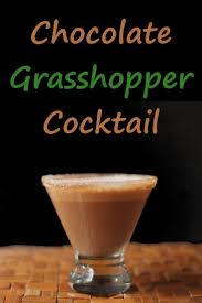 martini grasshopper 25 melhores ideias de grasshopper cocktail recipes no pinterest