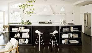 Kitchen Design Black And White Black And White Kitchen Interior Video And Photos