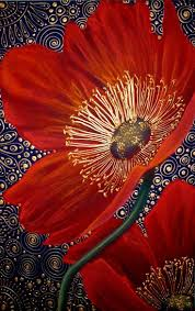 best 25 red poppies ideas on pinterest poppy flowers poppies