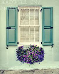window flower box in charleston south carolina photography